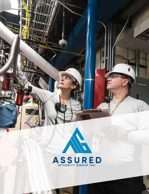 Website Project for Assured Integrity Group Inc.